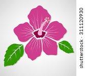 Hibiscus Flower Symbol Concept