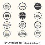 set of premium quality  ... | Shutterstock .eps vector #311183174