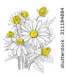 daisy flowers in bouquet....   Shutterstock .eps vector #311184884