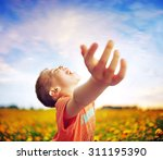 little boy in flowers field | Shutterstock . vector #311195390
