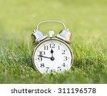 Clock On Meadow