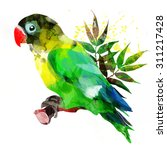 bright african parrot on a...   Shutterstock . vector #311217428