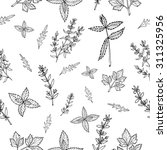seamless vector pattern with... | Shutterstock .eps vector #311325956