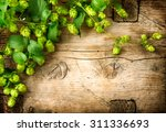 hop twig over old wooden table... | Shutterstock . vector #311336693