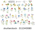 floral collection of painted... | Shutterstock . vector #311343080