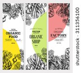 organic food banner collection. ... | Shutterstock .eps vector #311356100