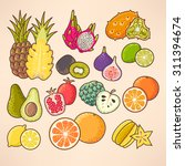 colorful exotic fruits and... | Shutterstock .eps vector #311394674