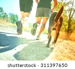 Stock photo  a dog out enjoying nature with two women jogging on a path cross toned with a retro vintage 311397650