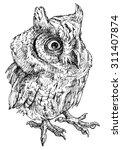 owl   drawn vector illustration ...