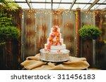 pastel colored flower petals... | Shutterstock . vector #311456183