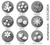 fresh herbs and spices icon set.... | Shutterstock .eps vector #311512814