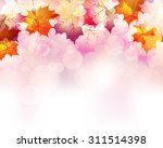 maple background | Shutterstock .eps vector #311514398