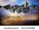 abstract composition  business... | Shutterstock .eps vector #311544980