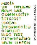 social media in the internet  ... | Shutterstock . vector #311558228