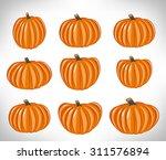 pumpkin | Shutterstock .eps vector #311576894