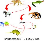the food chain in the south... | Shutterstock .eps vector #311599436