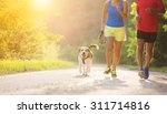 Stock photo active seniors running with their dog outside in green nature 311714816