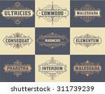 pack of labels and banners | Shutterstock .eps vector #311739239