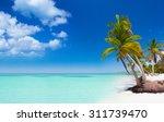 tropical beach as a wild nature ... | Shutterstock . vector #311739470