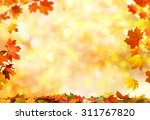 Autumn Background With Maple...