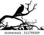 a silhouette of a raven sitting ... | Shutterstock .eps vector #311798309