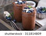 healthy vegan chocolate chia... | Shutterstock . vector #311814809