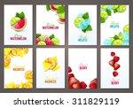 set of brochures with fruits... | Shutterstock .eps vector #311829119