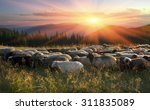 high in the mountains at sunset ... | Shutterstock . vector #311835089