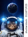 Stock photo beautiful cat in outer space elements of this image furnished by nasa 311871923