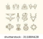 vector set of trendy linear... | Shutterstock .eps vector #311884628