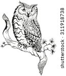 owl sits on tree branch.... | Shutterstock . vector #311918738