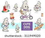 poodle cute dog and his friend... | Shutterstock .eps vector #311949020