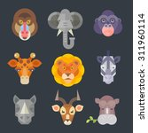 African Animal Icon Color Set....