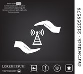 web us icon. vector design | Shutterstock .eps vector #312059579