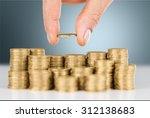 loan. | Shutterstock . vector #312138683