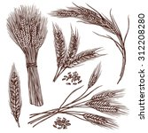 wheat ears cereals crop sketch... | Shutterstock .eps vector #312208280