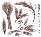 wheat ears cereals crop sketch... | Shutterstock .eps vector #312208280