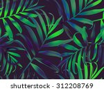 tropical colorful palm leaves.... | Shutterstock . vector #312208769
