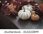Autumn Still Life With Pumpkins ...