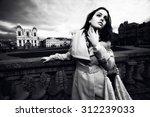 beautiful fashion girl brunette ... | Shutterstock . vector #312239033