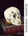 Skull With Book For Halloween