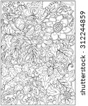 coloring page with vintage... | Shutterstock .eps vector #312244859