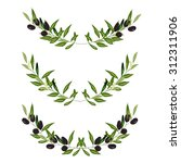 olive frame. vector illustration   Shutterstock .eps vector #312311906