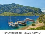 three tourist boats moored at... | Shutterstock . vector #312373940