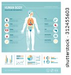 human body health care... | Shutterstock .eps vector #312455603