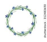 delicate watercolor wreath...   Shutterstock . vector #312483650
