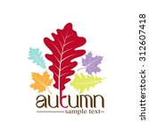 autumn leaves design | Shutterstock .eps vector #312607418
