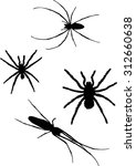 illustration with four spider... | Shutterstock .eps vector #312660638