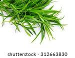 Tarragon Herbs Close Up...