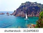 seascape . mediterranean coast... | Shutterstock . vector #312690833